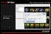 Adobe Bridge Tutorials